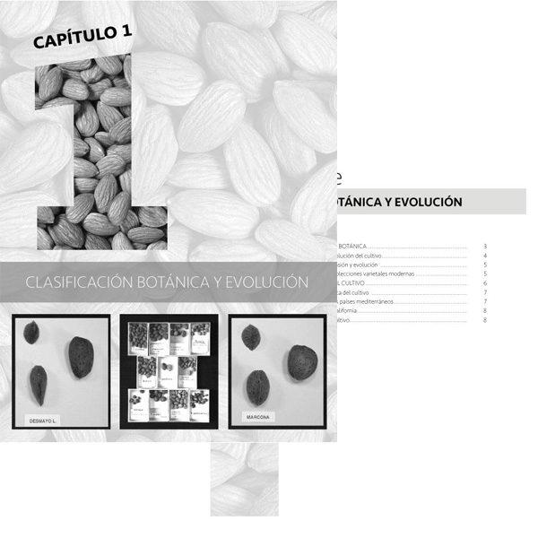 1 Clasificación botánica y evolución del almendro