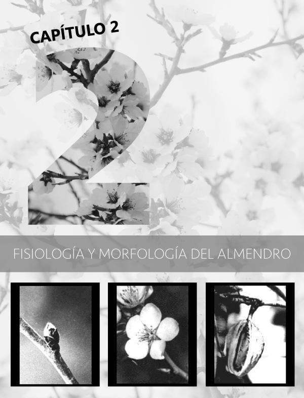 Fisiología y morfología del almendro portada